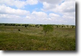 Texas Land 107 Acres 000 North Whitt Rd
