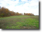 Tennessee Farm Land 628 Acres 627.50 Ac. Barnes Rd/ Birdwell Rd.