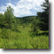 20 Acres With Well Near Whitney Point