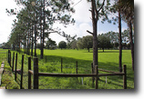 Florida Land 20 Acres Mulberry Equestrian Home