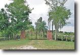 Florida Farm Land 478 Acres Caloosa Farms