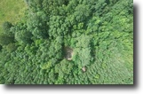 3.12+/- Acre Wooded Parcel—Sells Absolute