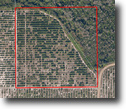 Florida Land 23 Acres Alico Clay Pit Road Grove
