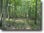 104 Acres Hunting Land near State Forest