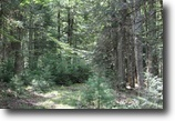 Michigan Hunting Land 203 Acres TBD Lukes Rd., Amasa. Mls# 1104254