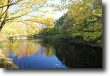 31+ Acres - Pond