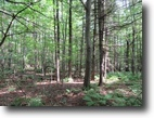 54 acre Timberland Corinth NY Hollister Rd