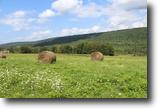 120 acres Farmland Ithaca NY Sugar Bush