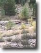 California Hunting Land 40 Acres California Gold Mining Claim w/Creek 40 ac