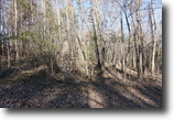 27 + Acres perfect for Getaways!