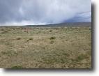 40 Acres of Surveyed Land near Rawlins, Wy