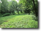 5.8 Acre River Property In Green Co.  KY