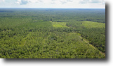 Florida Land 2 Acres Brick Road Mitigation Bank