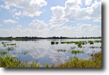 Florida Land 38 Acres Lake Buffum Shores