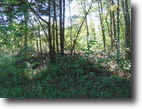 Tennessee Hunting Land 1 Acres 1.30 ac private & secluded, no restriction