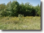 Tennessee Land 1 Acres 0.53 wooded level ac no restrictions,
