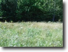 Tennessee Land 2 Acres 1.52 wooded level ac no restrictions