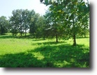 Tennessee Farm Land 21 Acres 21+ ac joins corp,mostly pasture,fenced,
