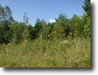 Tennessee Land 10 Acres 9.50 ac private & secluded, no restriction