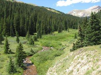 Kauffman Creek, claim creek and views