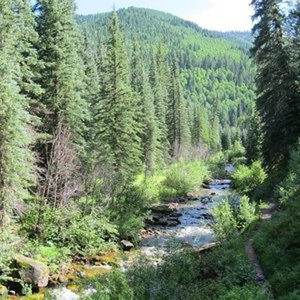 Creek view from ridge