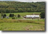 New York Farm Land 40 Acres Operating Beef Organic Farmland Farmhouse