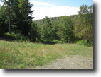 New York Hunting Land 101 Acres 101 Ac Timber and Hunting Land near Elmira