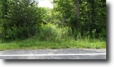 23 Acres Hunting Land near Syracuse