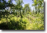 Timber Crossing 7.95 Acres in Missouri