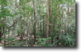 Vacant Lot For Sale In Suwannee County, FL