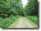 16 Acres Hunting Land Owner Financing