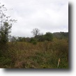 Tennessee Land 5 Acres 5.44ac no restrictions, ideal building sit