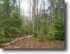 Michigan Hunting Land 34 Acres TBD off US-41 (at old M-28) Mls# 1104871