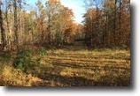 Wisconsin Hunting Land 134 Acres Cable, WI