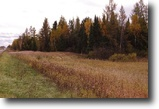 Wisconsin Hunting Land 80 Acres Hawthorne, WI