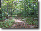 103 Acres Timberland in Dryden NY
