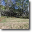 Tennessee Farm Land 25 Acres 25 ac, water tap installed, easy access, v