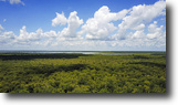 Florida Land 113 Acres Volusia County Hunting