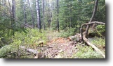File 82 - 34 Acres close to Larder Lake