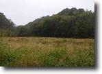 Tennessee Farm Land 252 Acres 252+ ac, pond,creek,springs,no restric