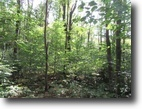 5 acres Building Lots in Williamstown NY