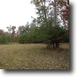 Tennessee Land 3 Acres 3.27 ac in the historical area of rugby