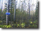 Ontario Hunting Land 5 Acres File 60 - Waterfront  lot on Elk Lake
