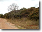 1.33 Acres in Moore, OK