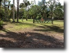 Rare & Unique 5 Acres Copeland, FL