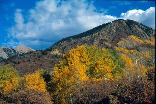 claim area views in the fall colorado