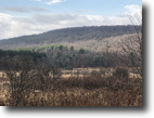 80 acres Catskill Foothills Bainbridge NY