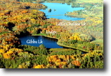 Wisconsin Hunting Land 251 Acres W5369 Chelsea Ave., Medford Mls# 141019