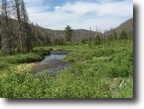 Colorado 40 acre Gold Mining claim w/Creek