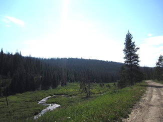 Upper Kauffman Creek, claim creek